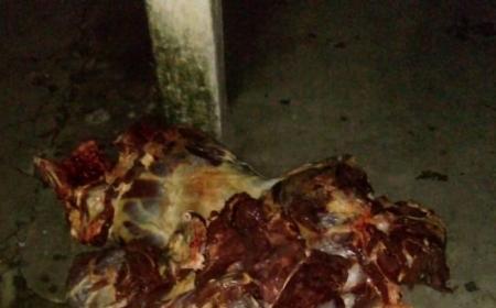 Secuestraron 138 kilos de carne y detuvieron a dos sujetos