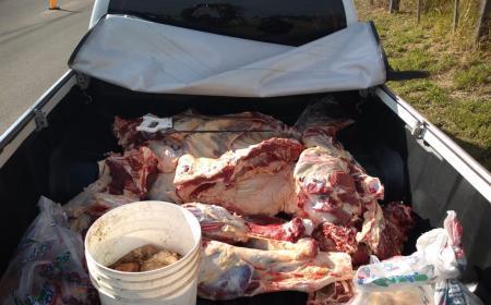 PRIAR Saladas secuestro 300 Kg. de carne faenada clandestinamente y una camioneta de alta gama