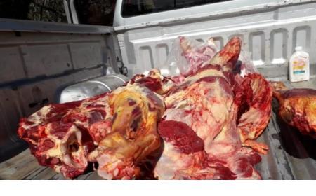 Secuestraron 150 kilos de carne bovina de faena clandestina